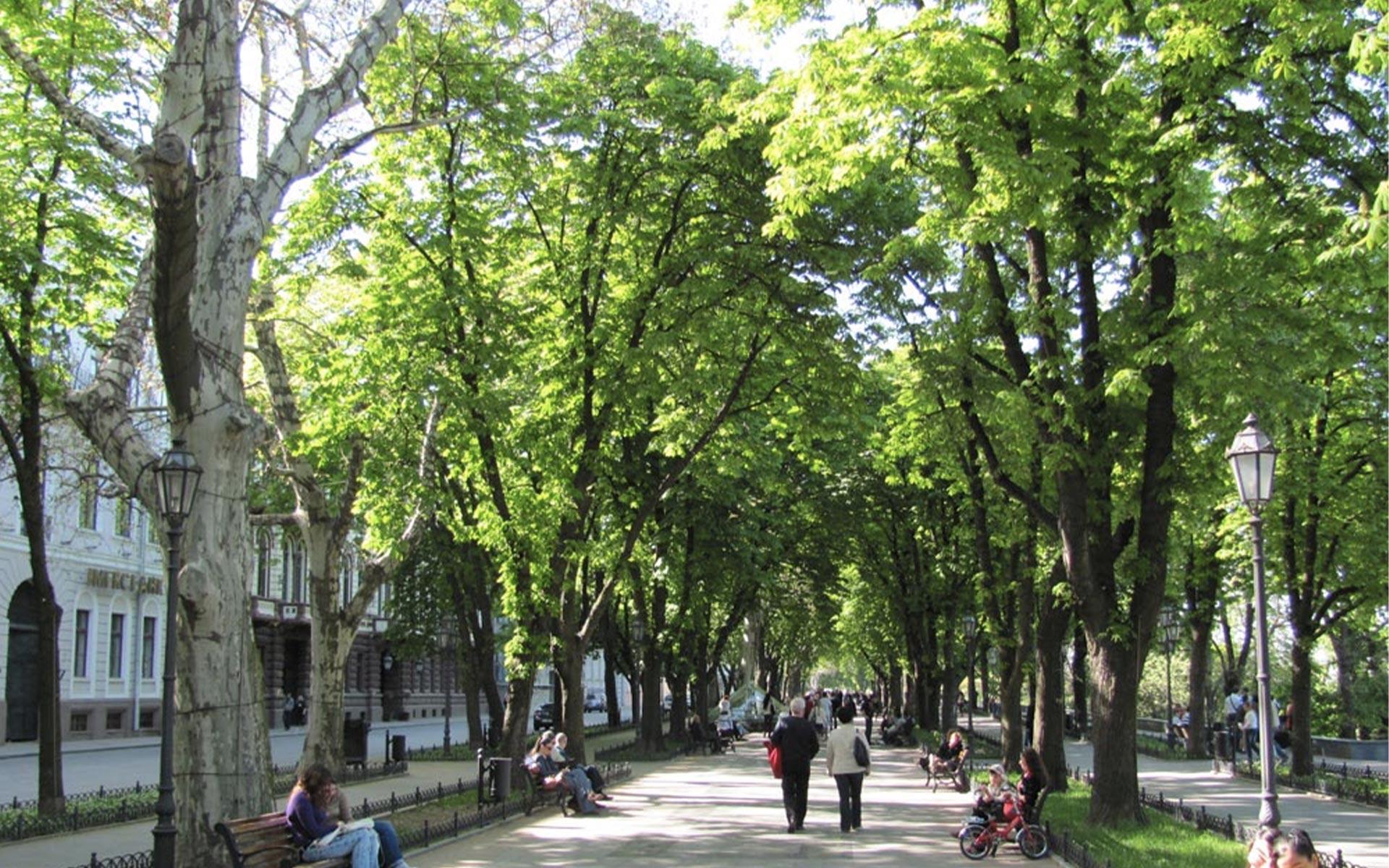 Séjour linguistique Odessa
