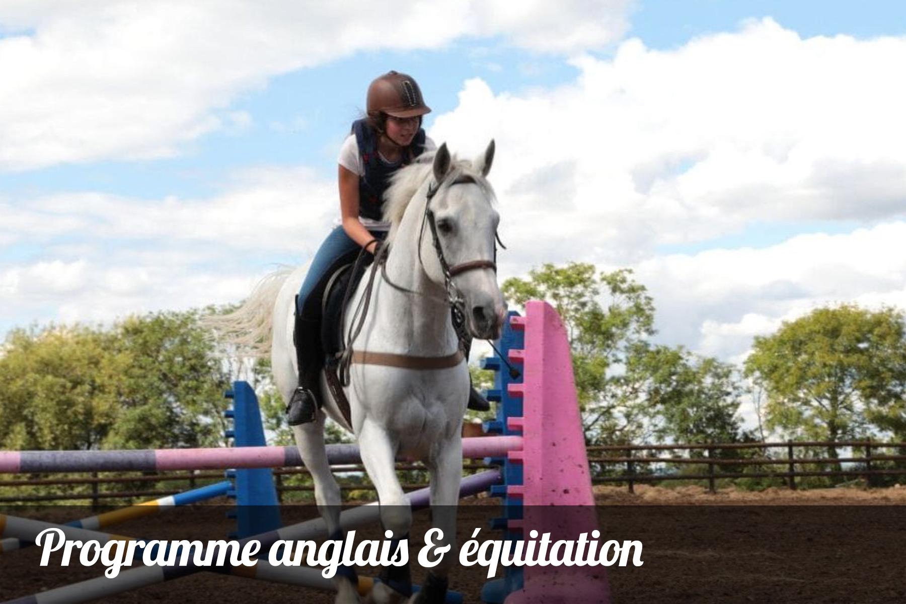 anglais equitation ressins