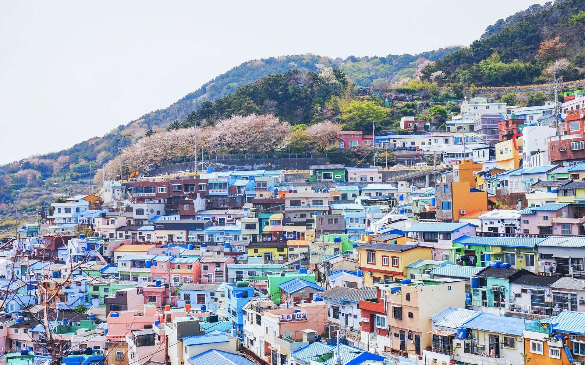 sejour linguistique Corée
